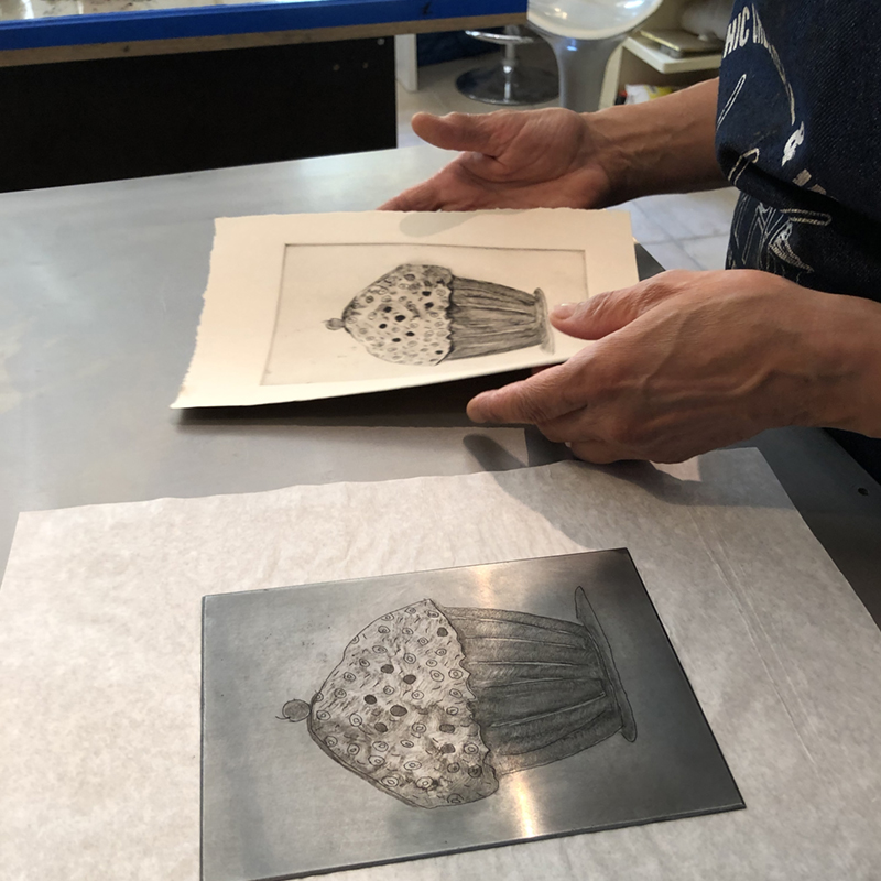 study printmaking in Italy